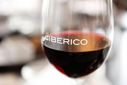 Beste spanische Weine vom Rioja bis zum Priorat verkosten | Mejores vinos españoles